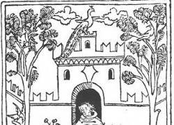 l'erboristeria dai tempi antichi ad oggi